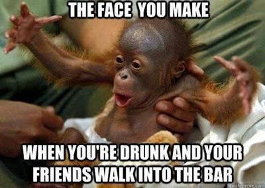 funny-monkey-baby-arms-drunk1.jpg
